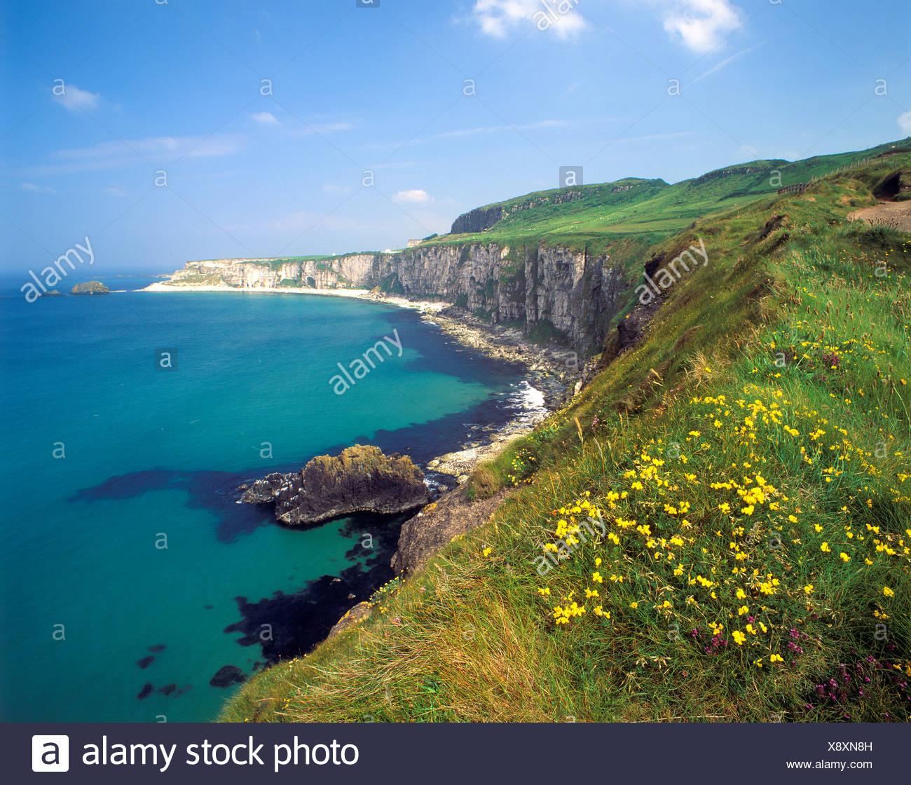 Coastline at Carrick a Rede, County Antrim, Northern Ireland, United Kingdom, Europe - Stock Image