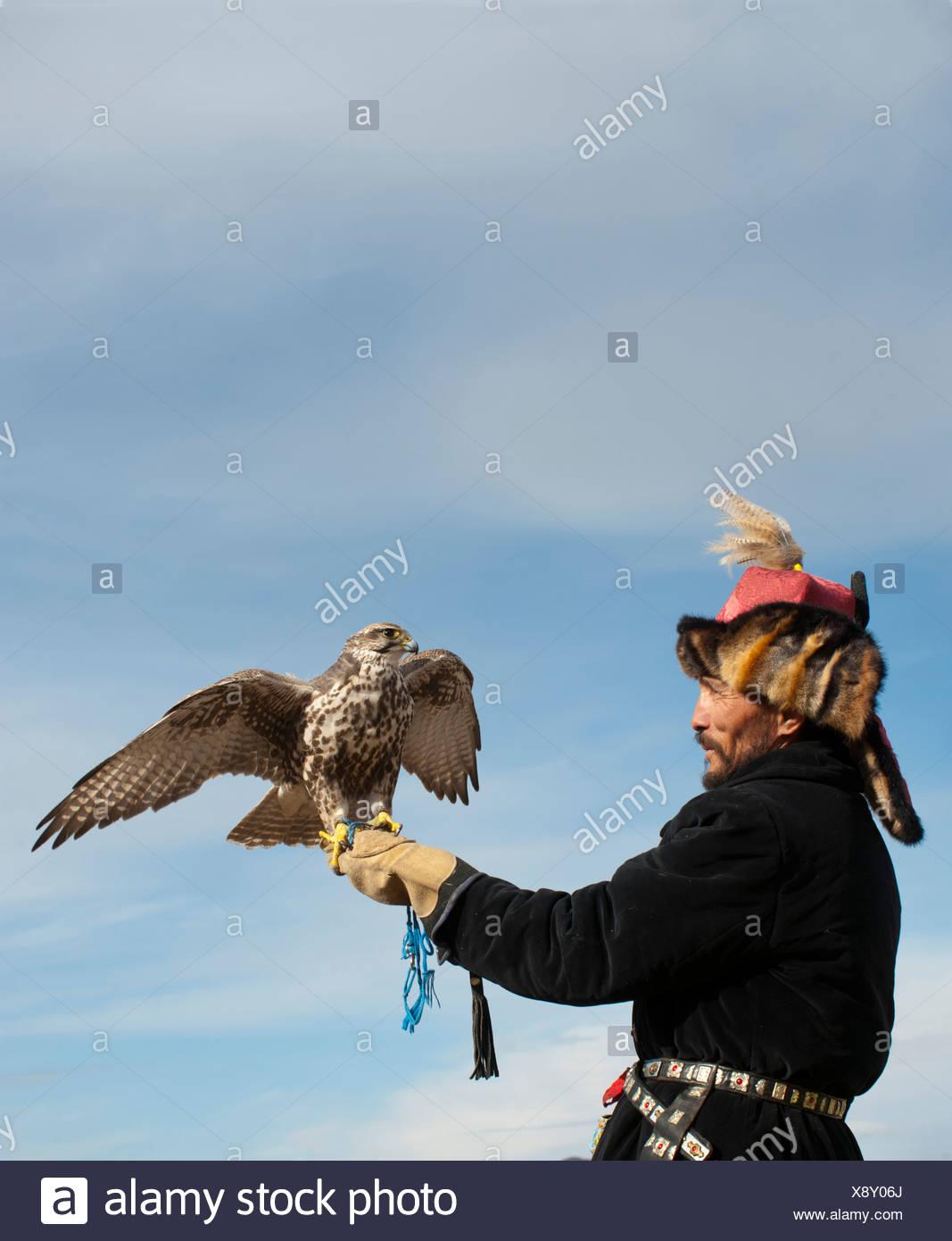 Kazhak Falconer with Saker Falcon at eagle hunters festival in western Mongolia - Stock Image