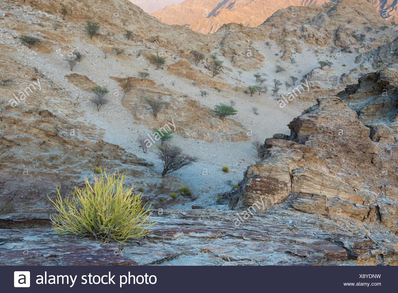 Sunrise over mountain landscape with sedimentary rocks. - Stock Image