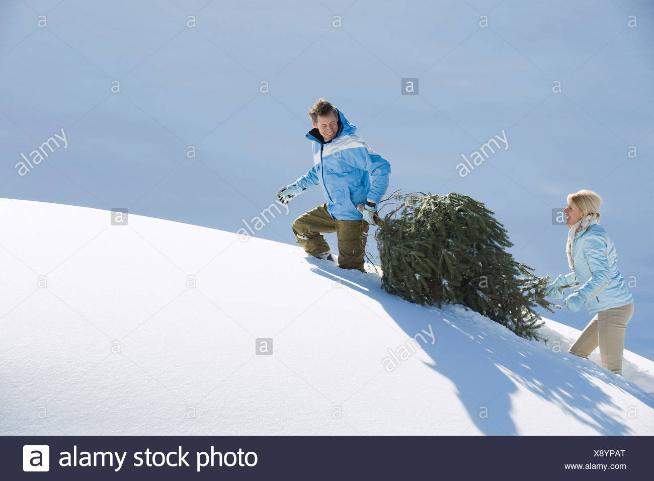 Italy, South Tyrol, Seiseralm, Couple carrying Christmas tree in snow Stock Photo