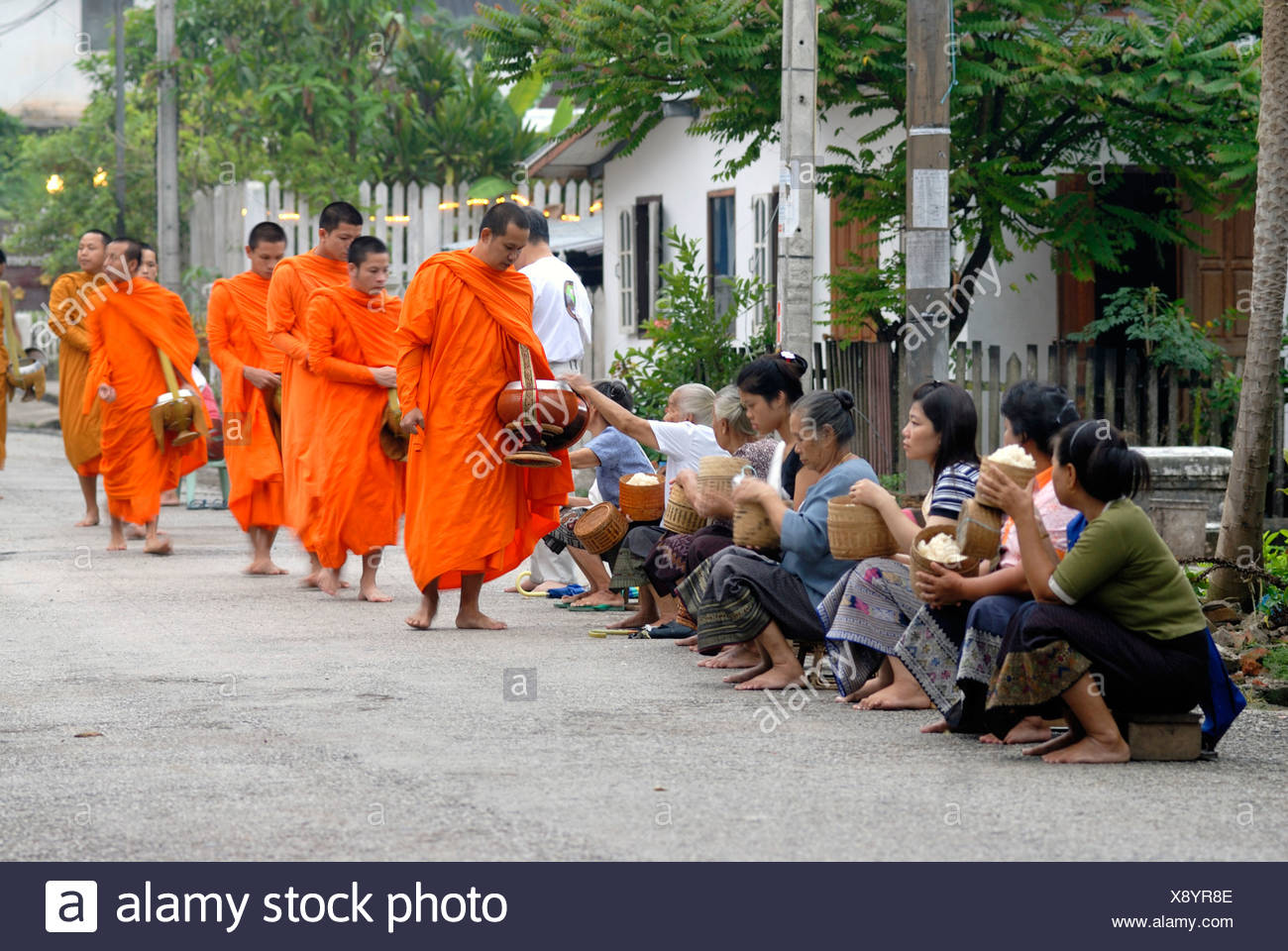 Morning alms collection, Thakbat of the monks and novices in the monasteries of Luang Prabang, men and women distributing food  - Stock Image