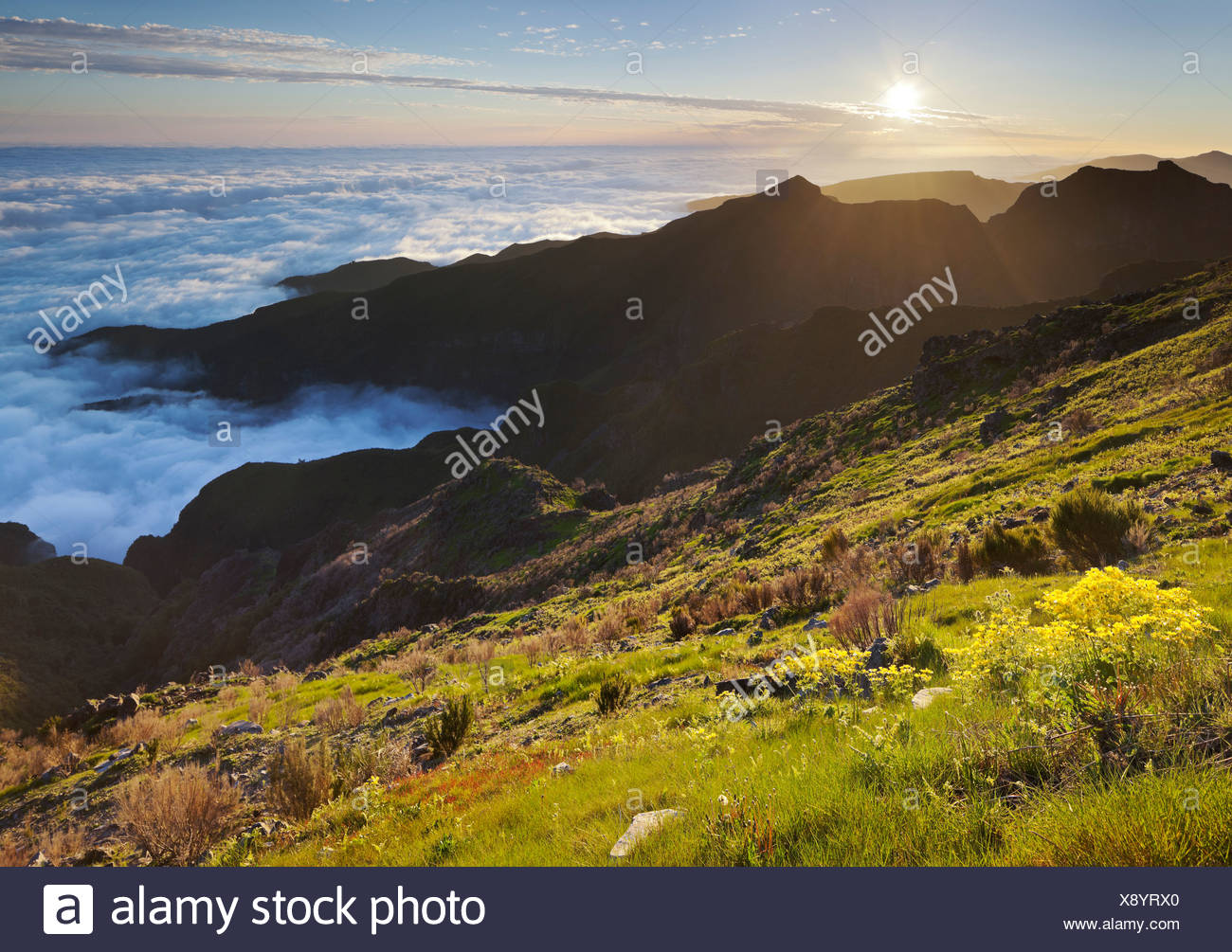 View from Terxeira onto Canario, sea of clouds, Madeira, Portugal - Stock Image