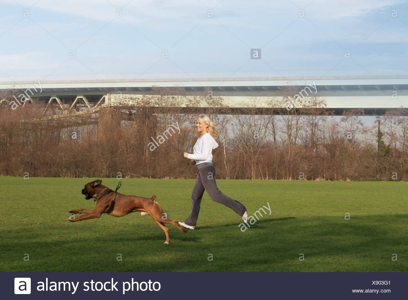 Woman running with dog in field - Stock Image