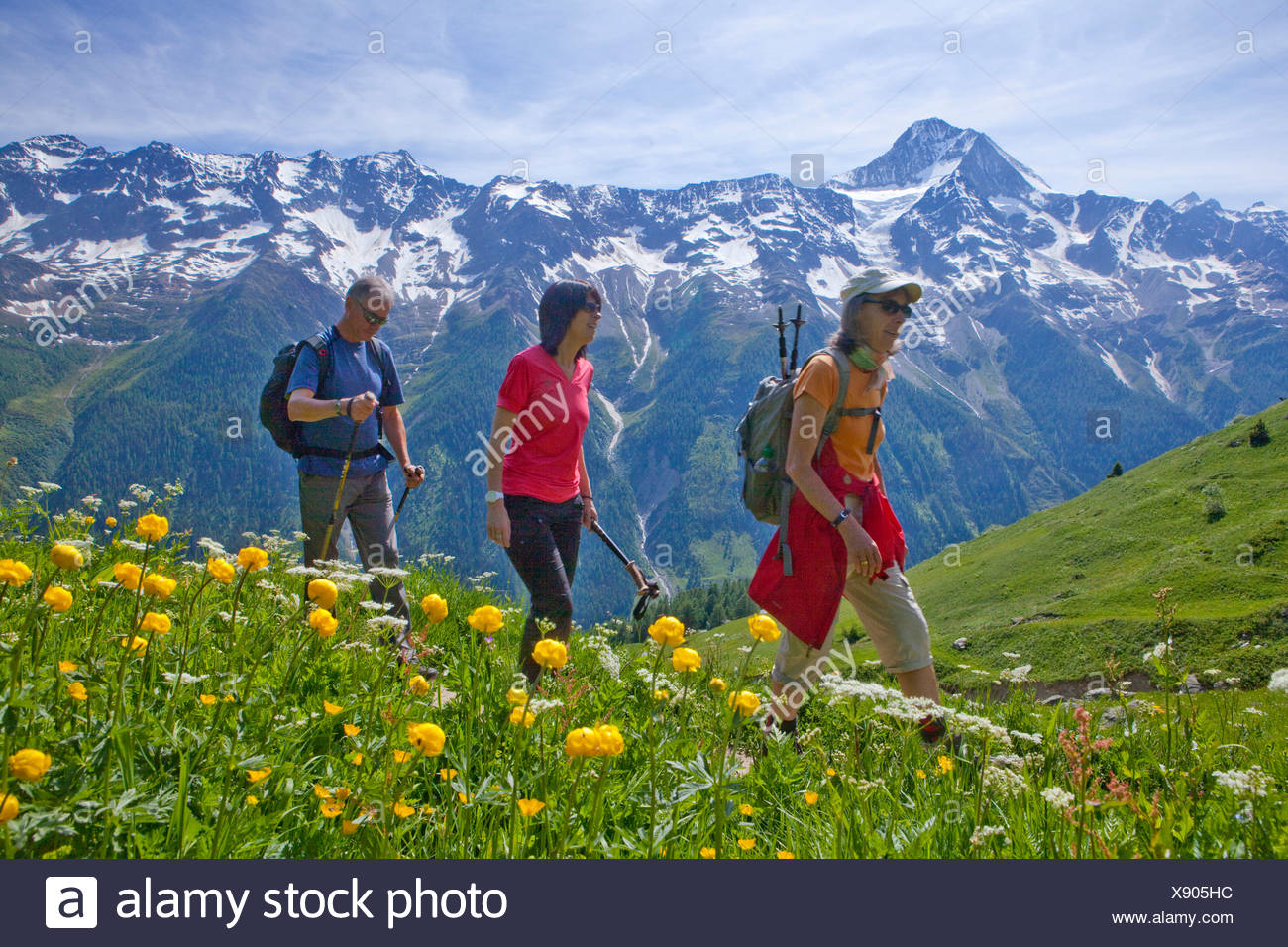 Walking, Hiking, Lötschentaler height way, height way, view, Bietschhorn, canton, Valais, mountain, mountains, group, footpath, - Stock Image