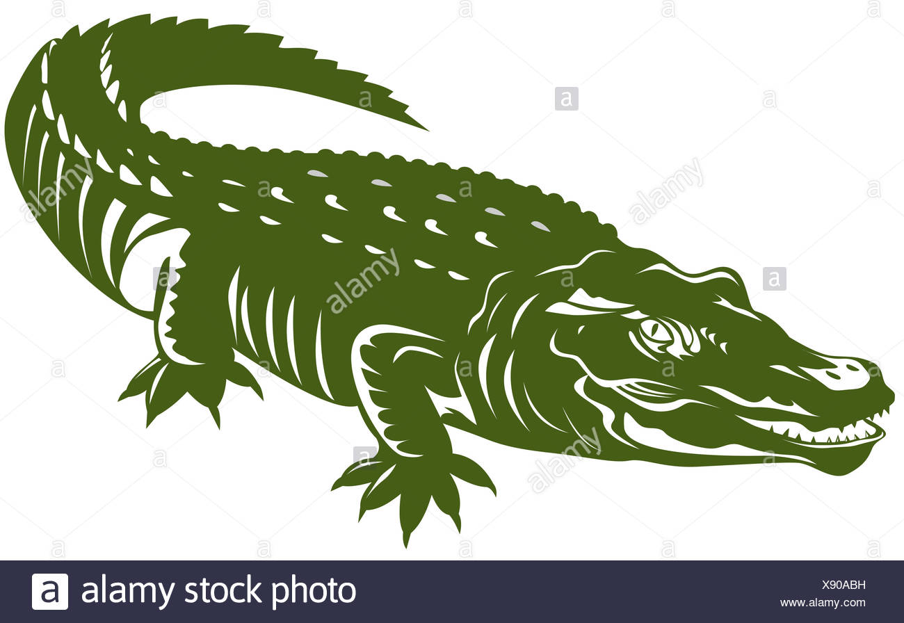 Illustration Crocodile Stock Photos & Illustration Crocodile Stock ...