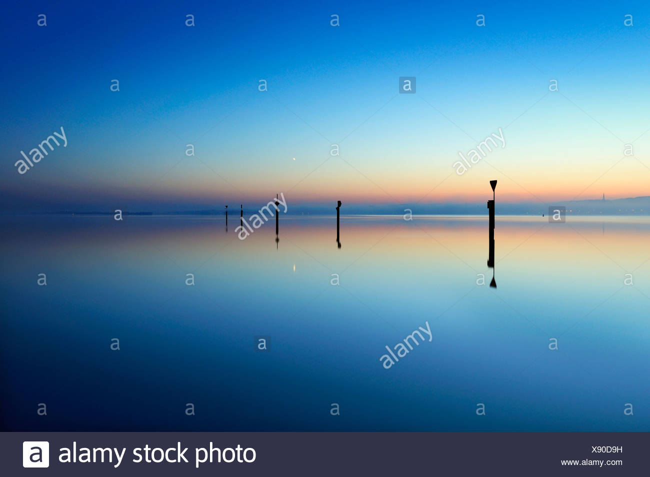 Morning mood on the lakeside of Lake Constance, near Moos, county of Constance, Baden-Wuerttemberg, Germany, Europe Stock Photo