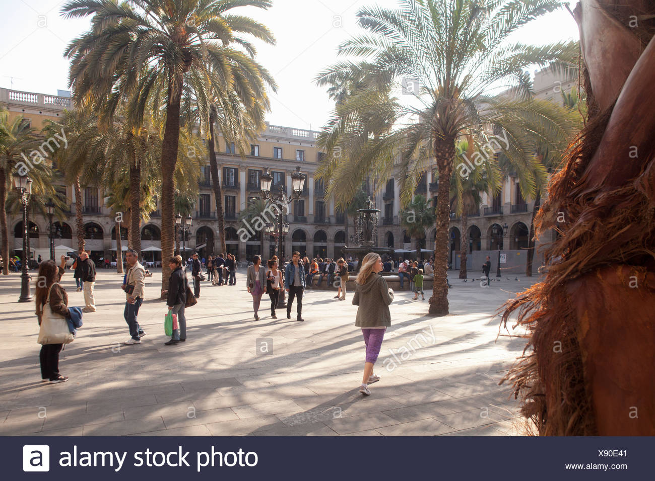 Placa Reial square, palm trees, tourists, historic district, Barcelona, Catalonia, Spain, Europe - Stock Image
