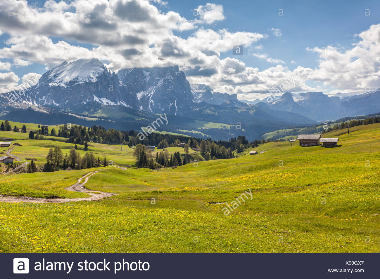 geography / travel, Italy, South Tyrol, Alm on the Seiser mountain pasture with view to the Plattkofel, Additional-Rights-Clearance-Info-Not-Available - Stock Image