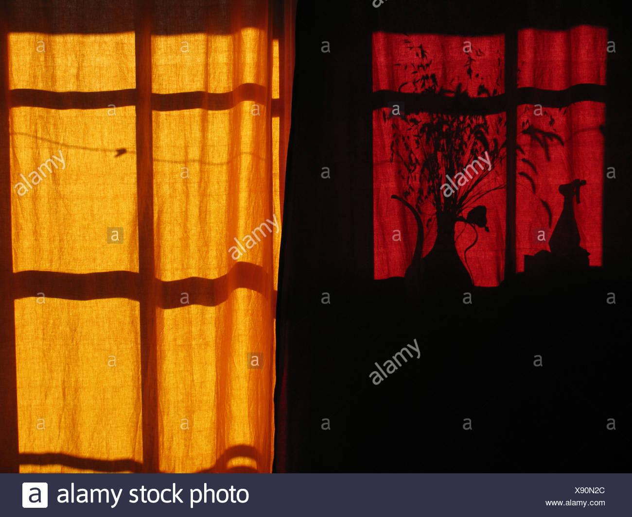 shadow,curtain - Stock Image