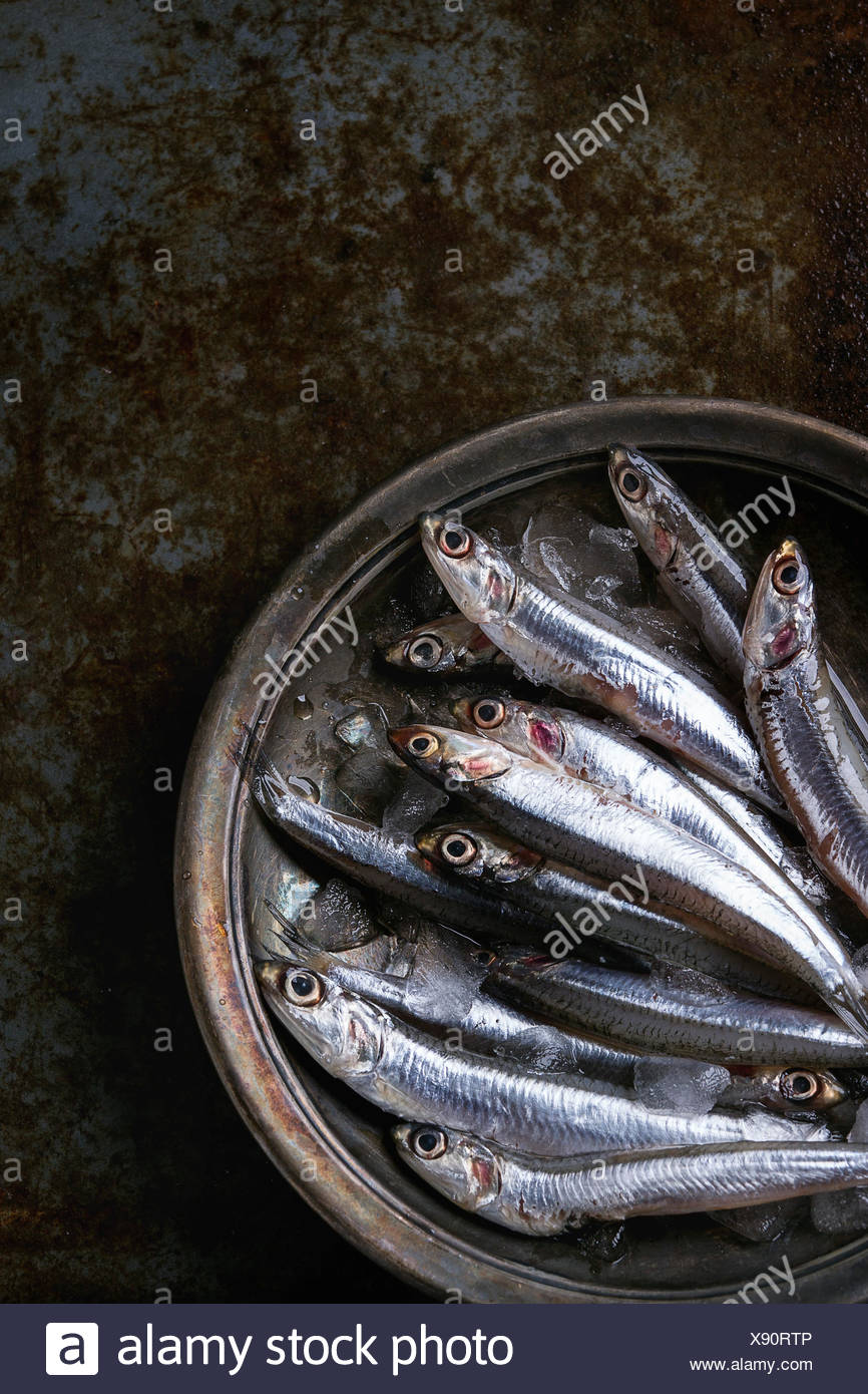 Lot of raw fresh anchovies fishes on crushed ice in vintage plate over old dark metal background. Top view. Sea food background theme. - Stock Image