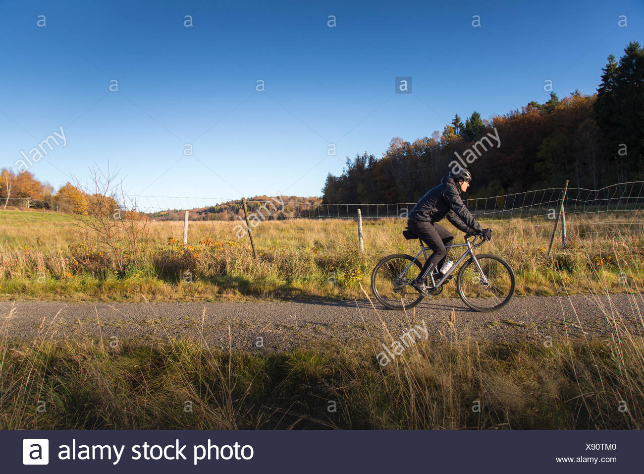 Sweden, Vastergotland, Lerum, Mature man riding bicycle on dirt road among pastures and forests - Stock Image