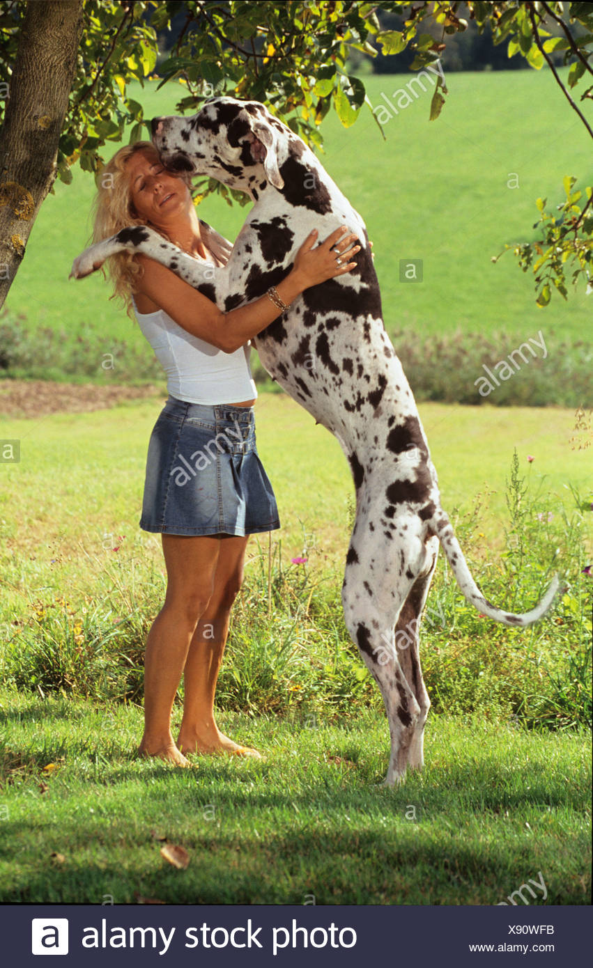 great-dane-and-woman-sex