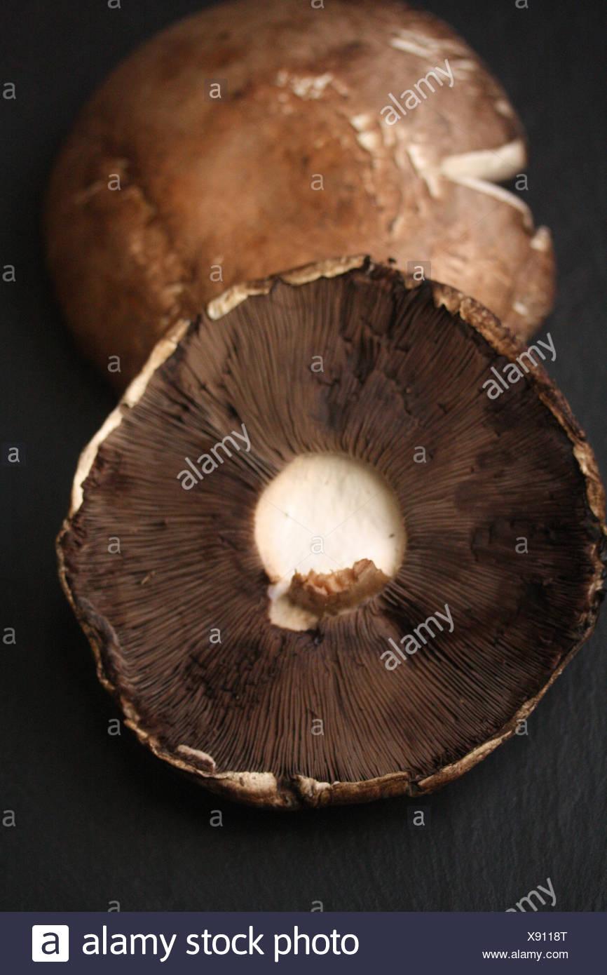 Portobello mushroom caps - Stock Image