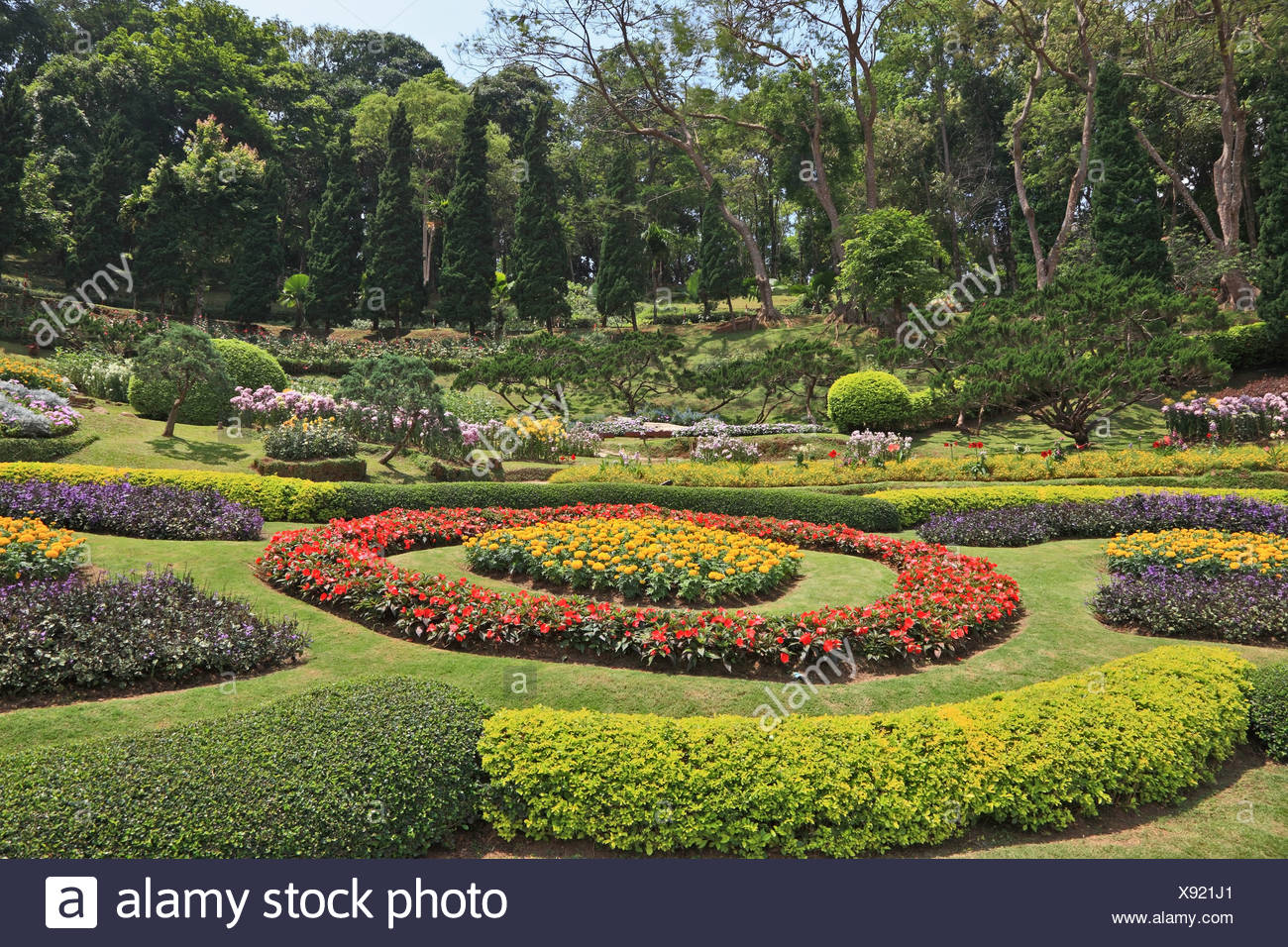 Acacias and artly decorated flower beds - Stock Image
