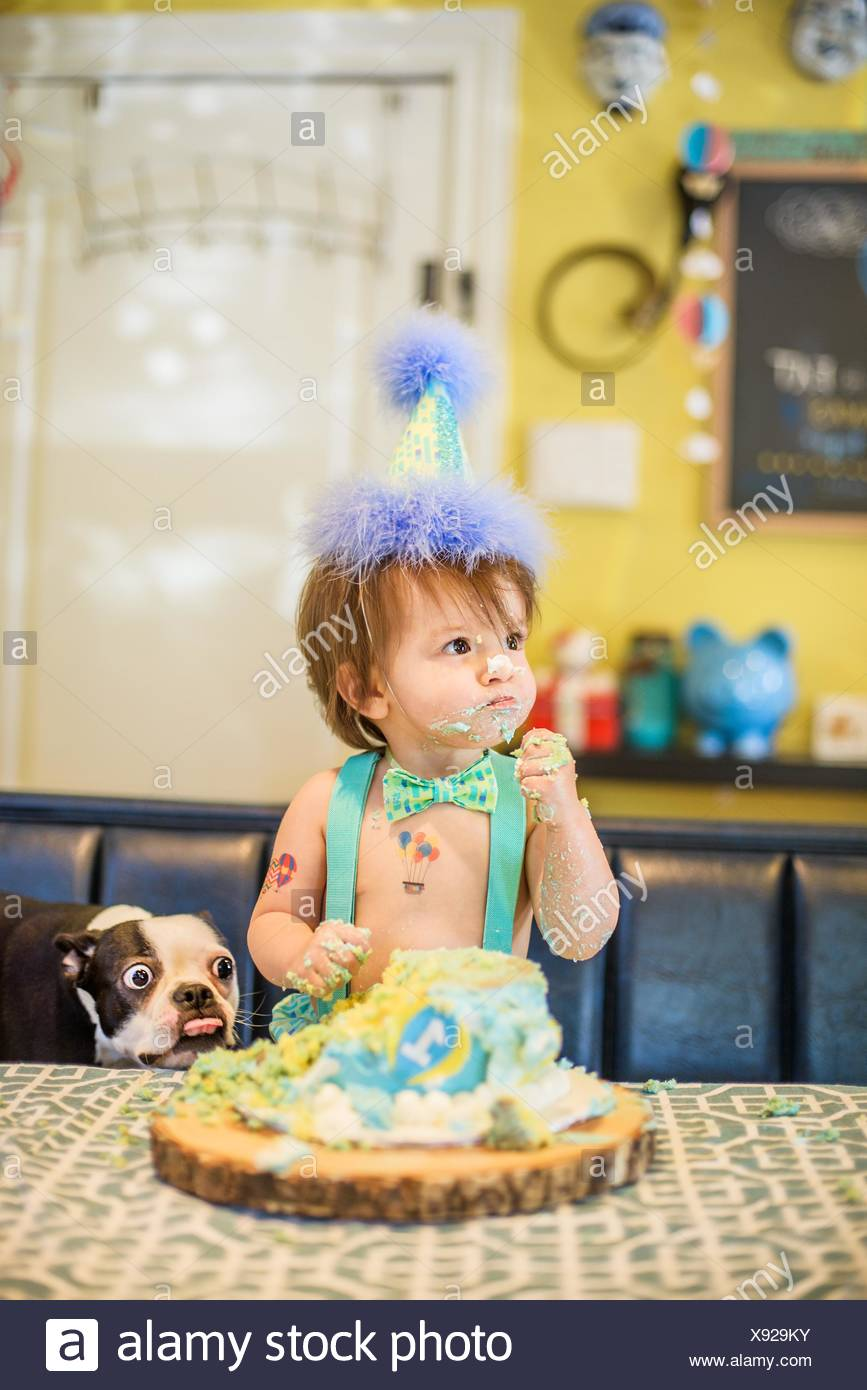 Dog Happy Birthday Messy Cake