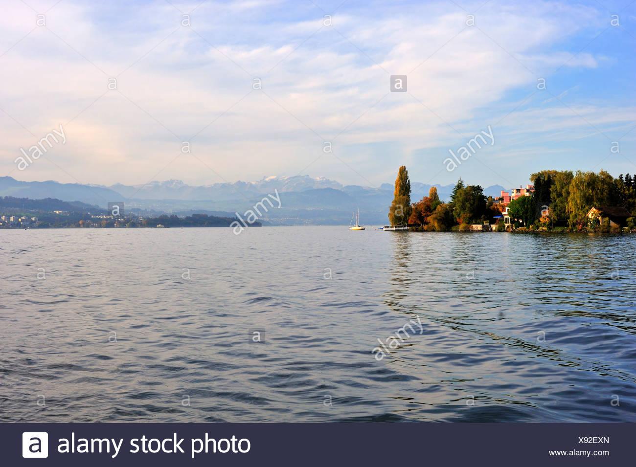 Lake Zurich, Zurich, Switzerland, Europe - Stock Image