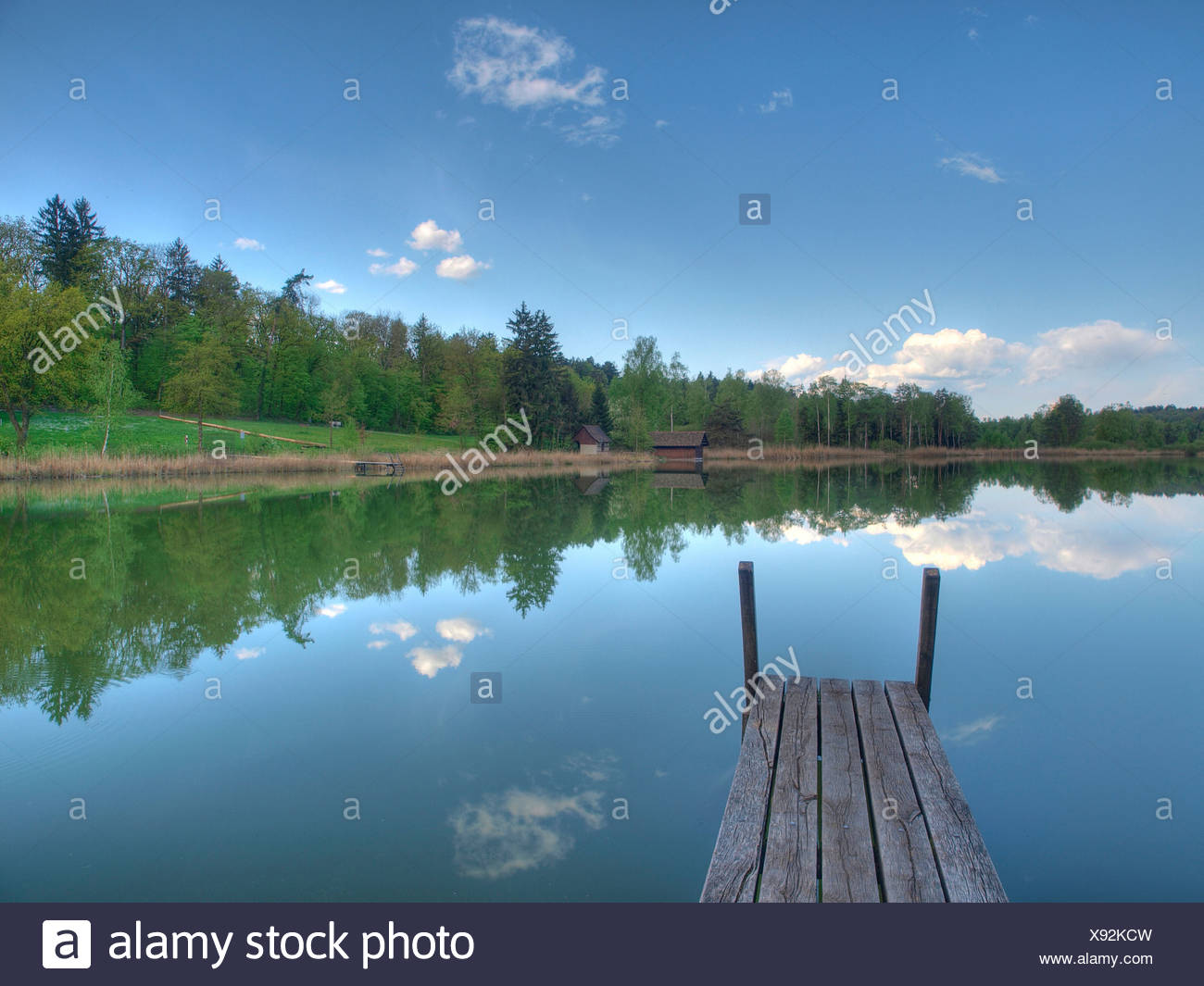 Blue, spring, himmel, idyl, footbridge, lake, wood, forest, water, clouds, canton Zurich, Switzerland, Husemersee, lake, Ossinge - Stock Image