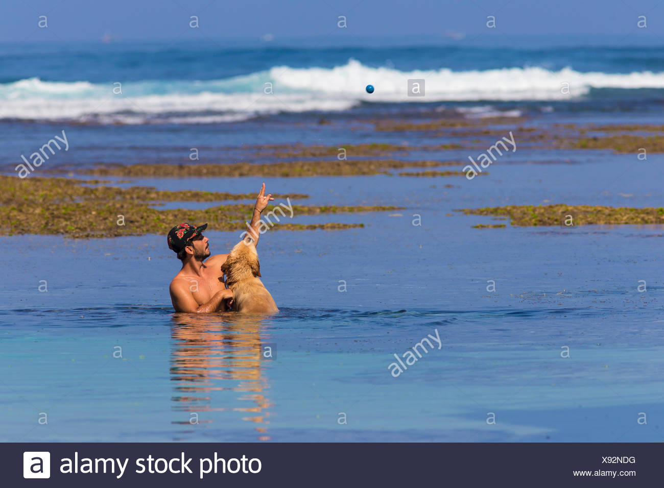 Young man plays with a dog on the ocean coastline in Bali, Indonesia - Stock Image
