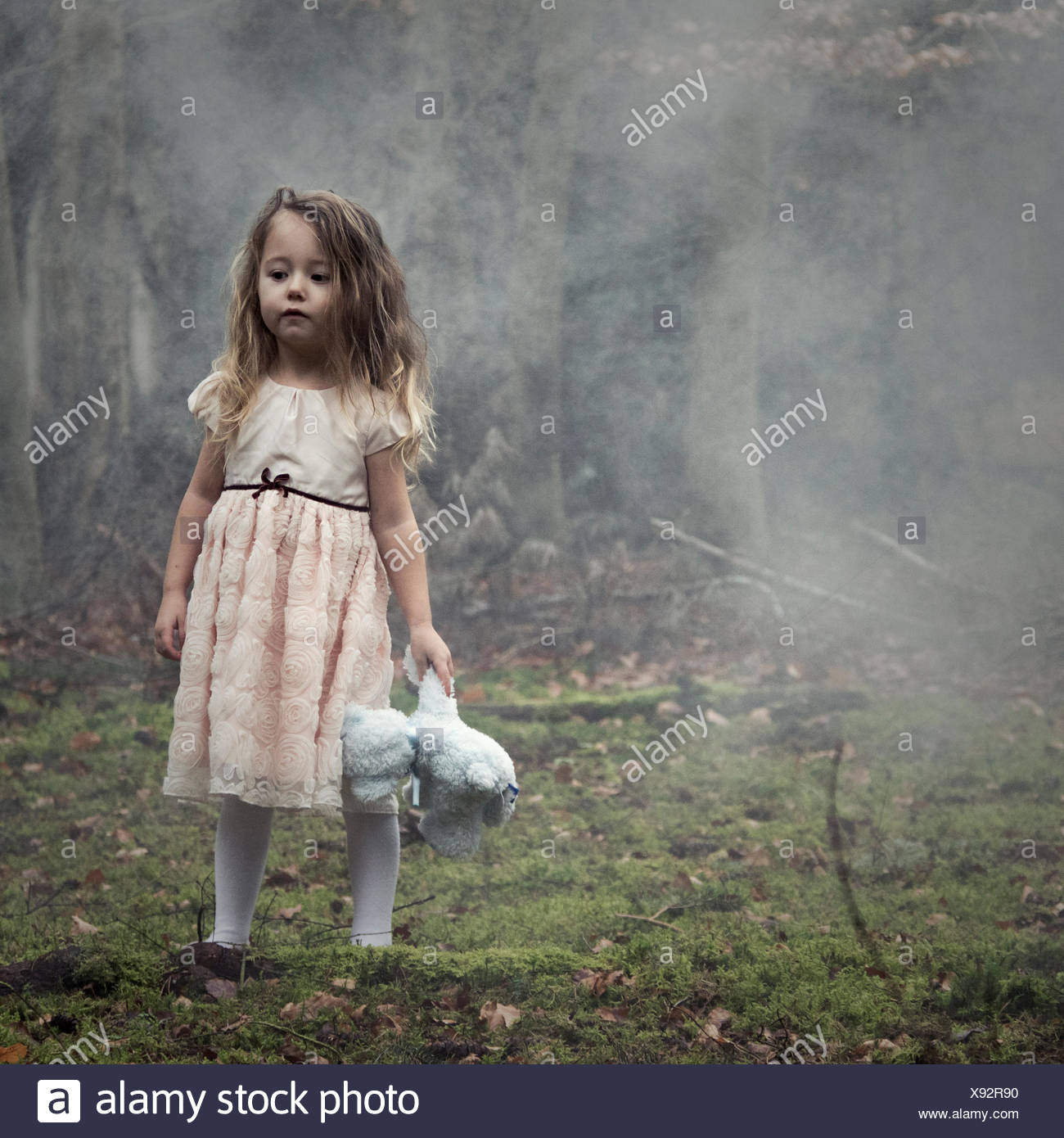 Girl standing in the woods holding a teddy bear - Stock Image