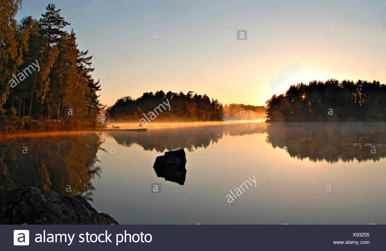 Leichter Nebel leuchtet goldfarben in der Morgensonne  an einem spiegelglatten schwedischen See; light fog glows in the colour of gold by the morning sun on a swedish lake smooth as a mirror Stock Photo