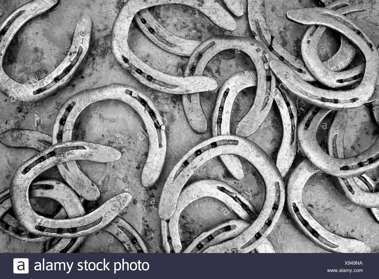 Horseshoe detail - Stock Image