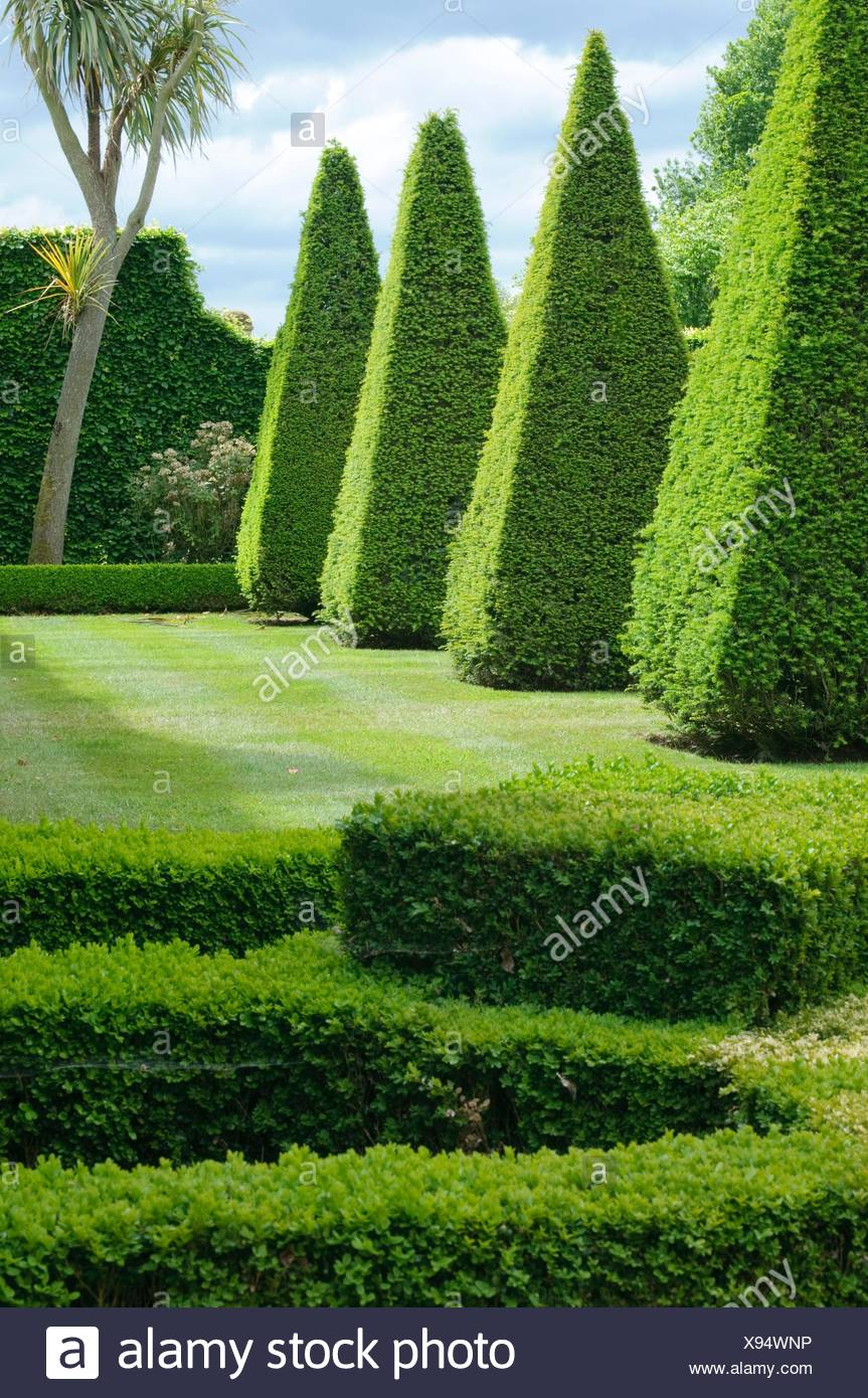 Boxwood Garden Stock Photos & Boxwood Garden Stock Images - Alamy on