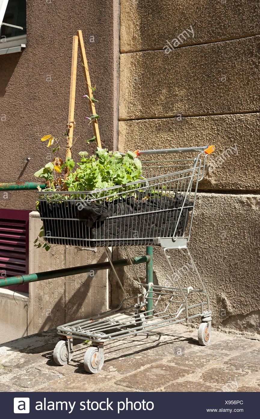 Guerilla Gardening Stock Photos & Guerilla Gardening Stock Images ...