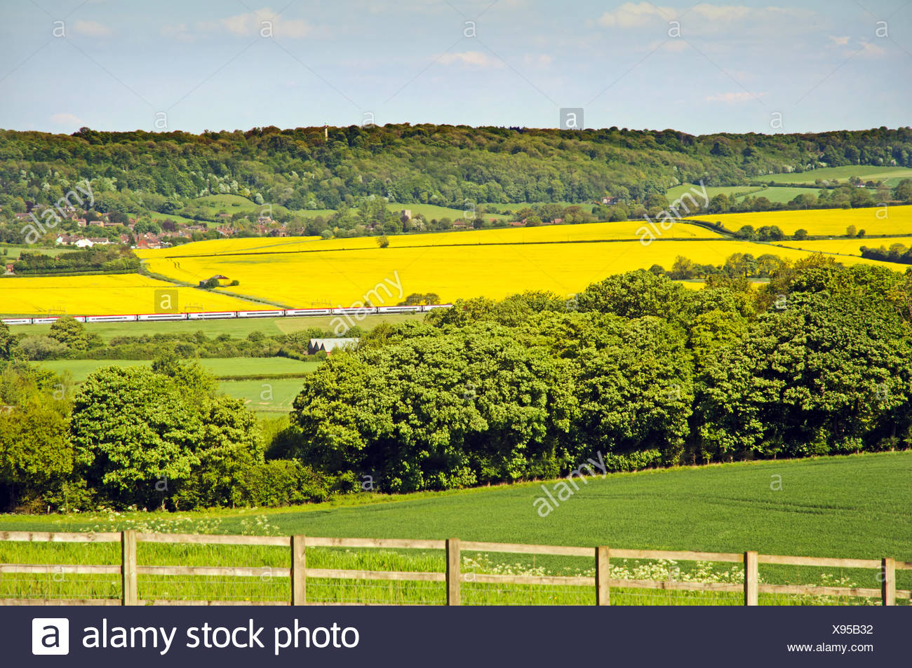 A train runs through Chiltern countryside in Sprin - Stock Image