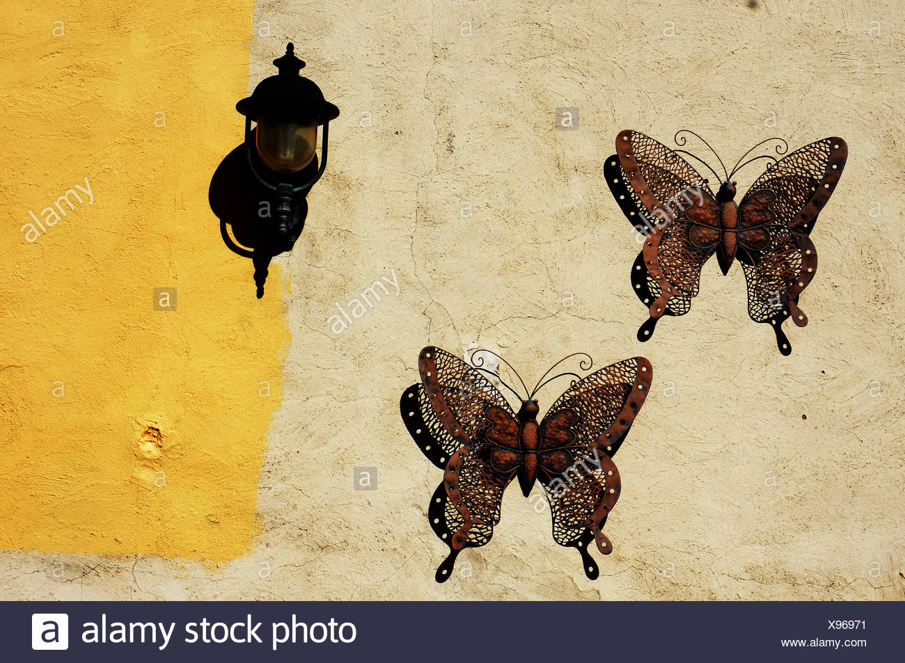 Butterfly wall decorations Stock Photo: 281036757 - Alamy