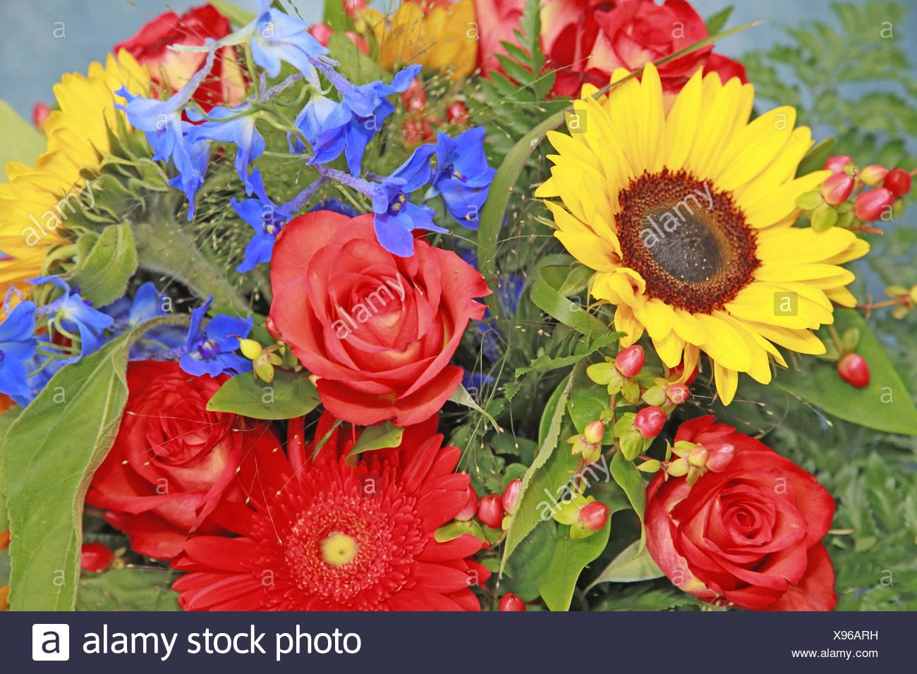 Yellow Roses Sunflower Flowers Stock Photos & Yellow Roses Sunflower ...