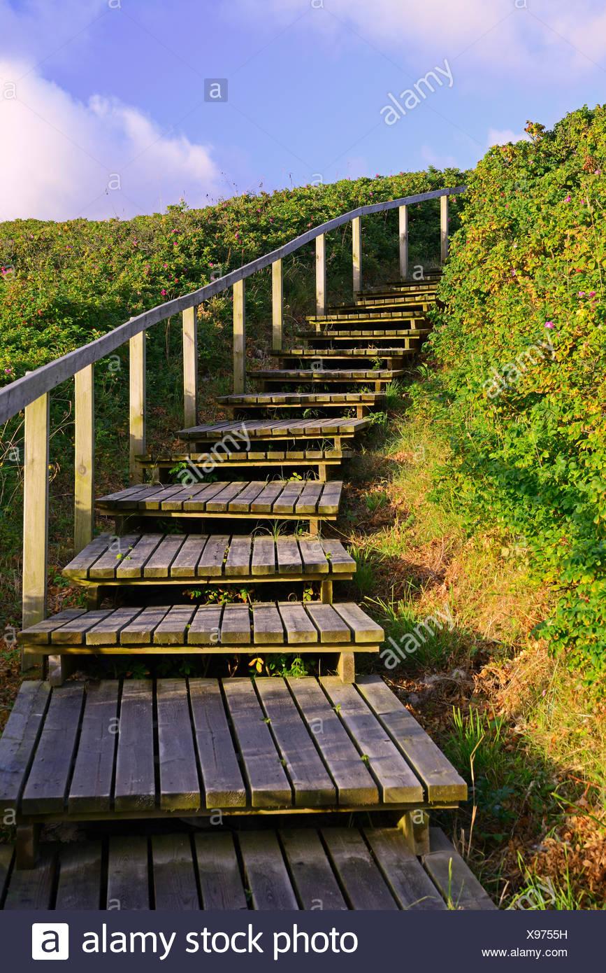 Zugang zum Strand durch die Duenen von Rantum, Sylt, nordfriesische Inseln, Nordfriesland, Schleswig-Holstein, Deutschland - Stock Image