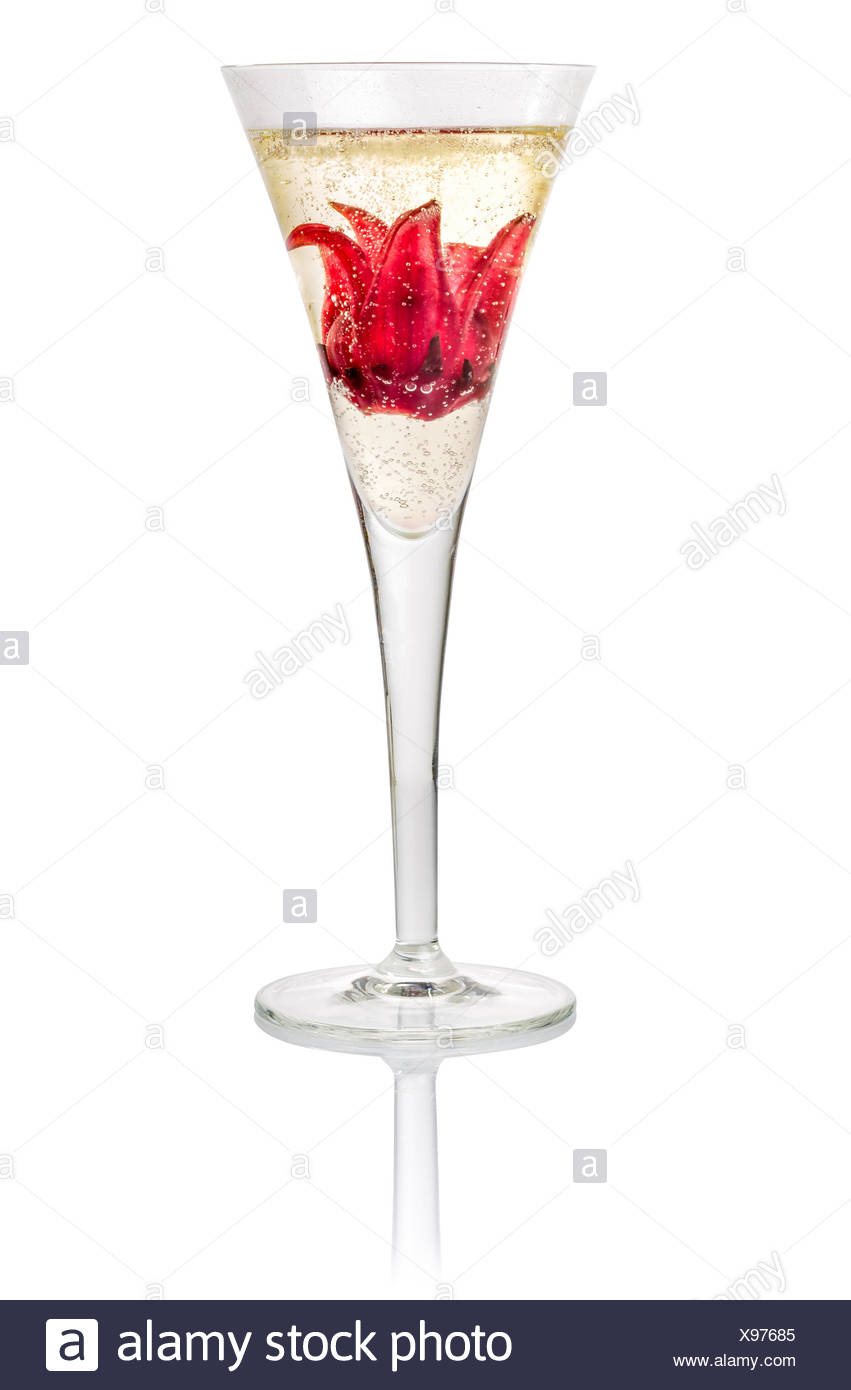 Champagne Cocktail Hibiscus Flower Stock Photos Champagne Cocktail