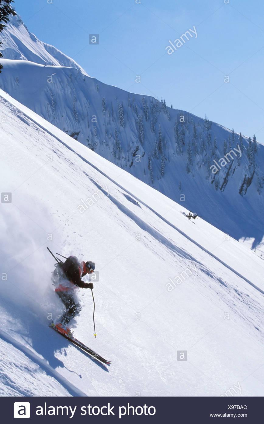 Skier skiing fresh deep powder in backcountry near Fernie Alpine Resort, British Columbia, Canada. - Stock Image