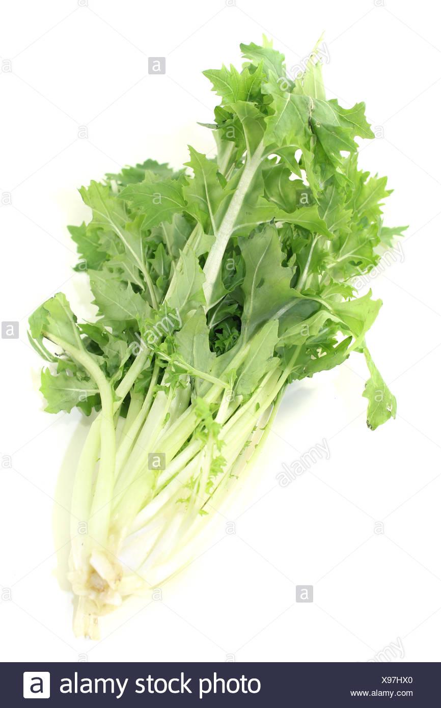 turnip green leafs Stock Photo