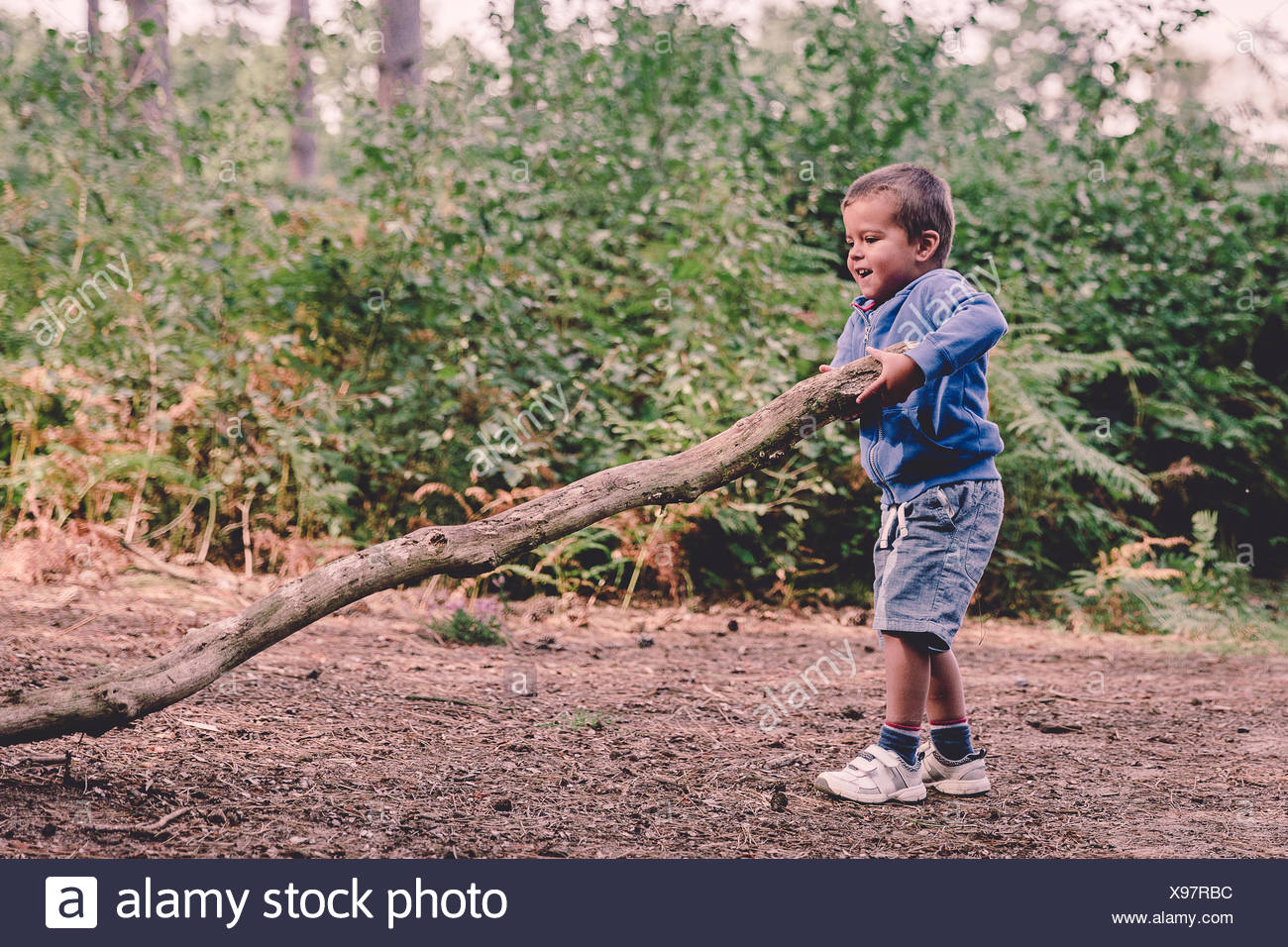 Boy in the woods lifting a heavy log - Stock Image