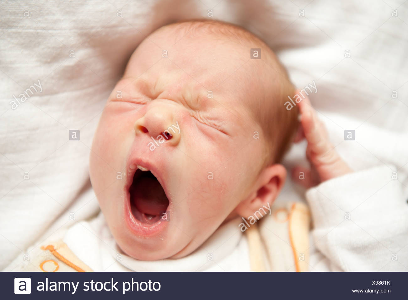Portrait, yawning newborn girl with wide-open mouth - Stock Image