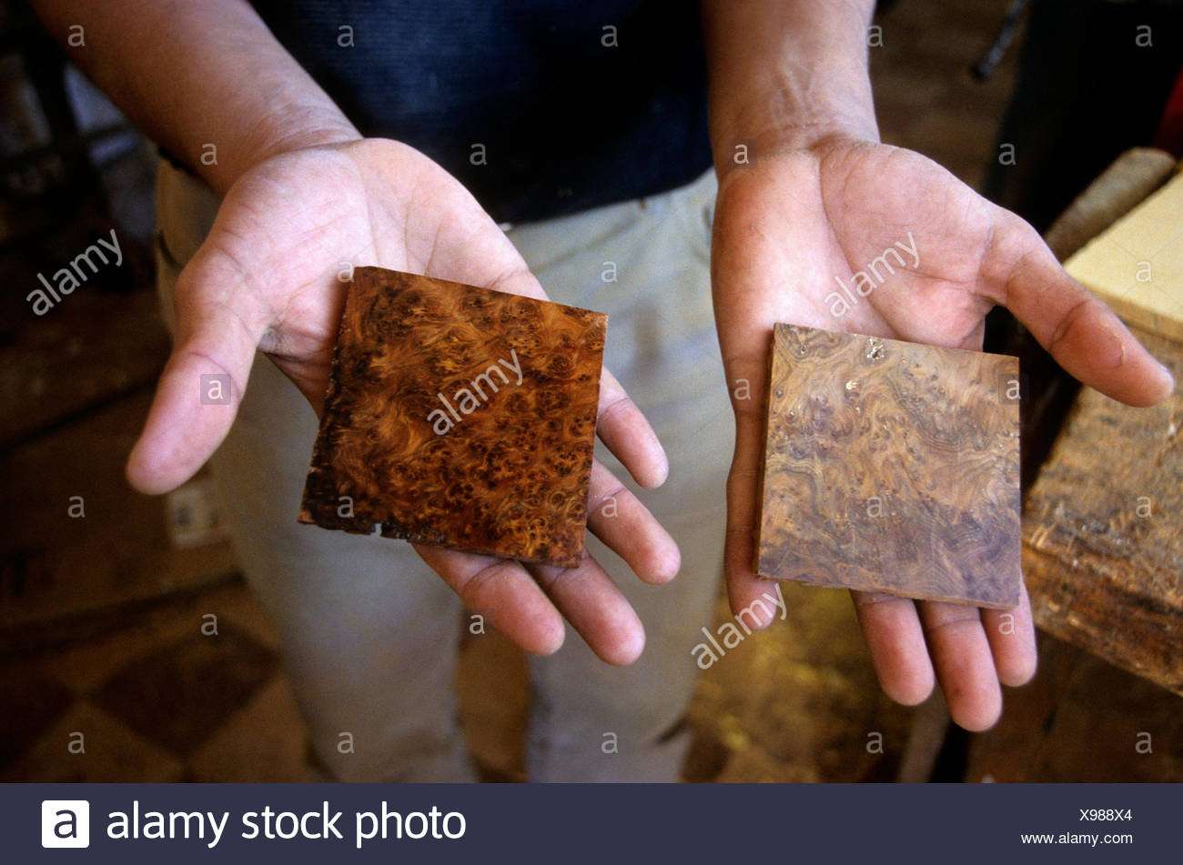 Polishing a thuya root piece, before and after, marquetry at Essaouira, Morocco, North Africa - Stock Image