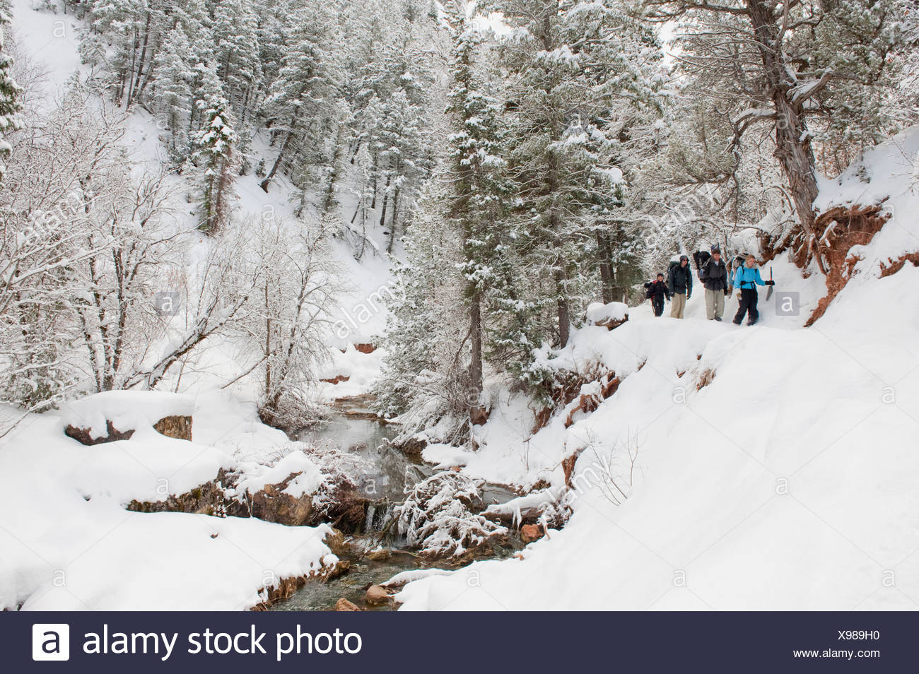 Four people backpack along a snowy trail next to a stream in Diamond Fork, Springville, Utah. - Stock Image