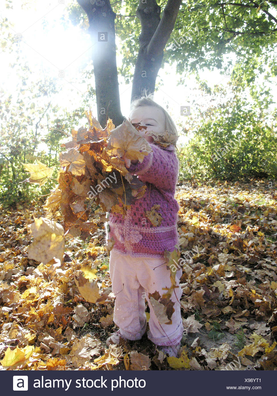 29d6fa4a6d6e Forest girls fall foliage plays cheerfully autumn back light series ...