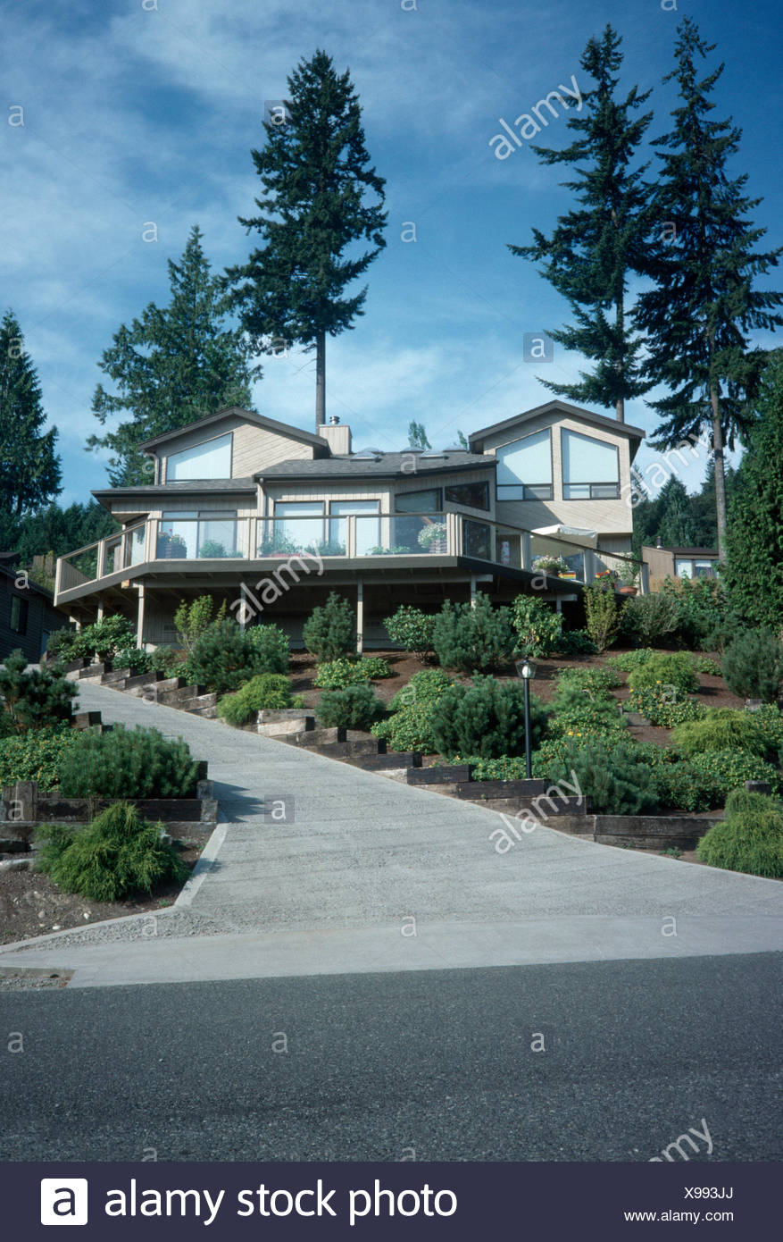 Exterior of a modern North American house with a paved path through neat borders with low growing green shrubs - Stock Image