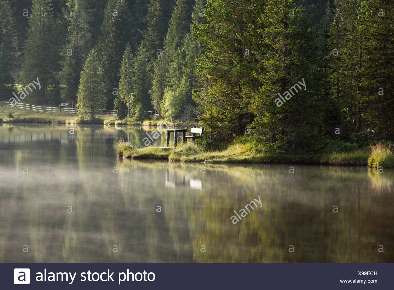 Morning mood at Lake Prebersee, Lungau, Salzburg state, Salzburg, Austria, Europe Stock Photo