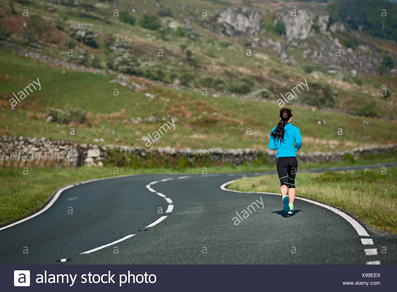 Rear view of female runner running on winding road, Capel Curig, Snowdonia, North Wales, UK - Stock Image