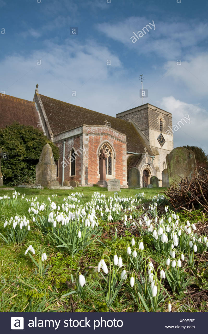 St Mary's Church and snowdrops in Kintbury, Berkshire, Uk - Stock Image