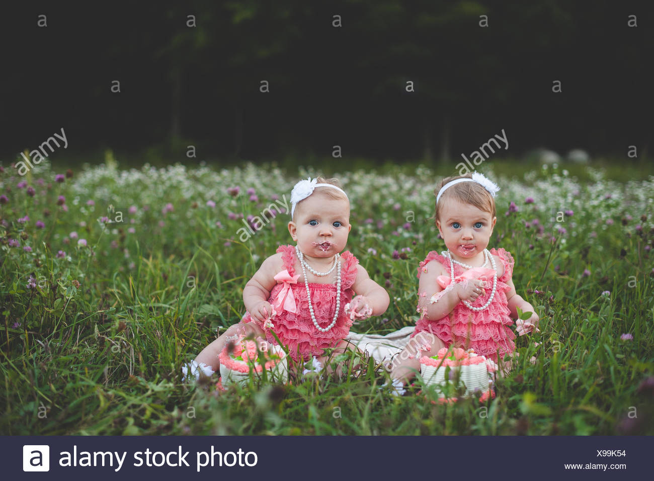 Portrait of baby twin sisters sitting in wildflower meadow eating birthday cake - Stock Image