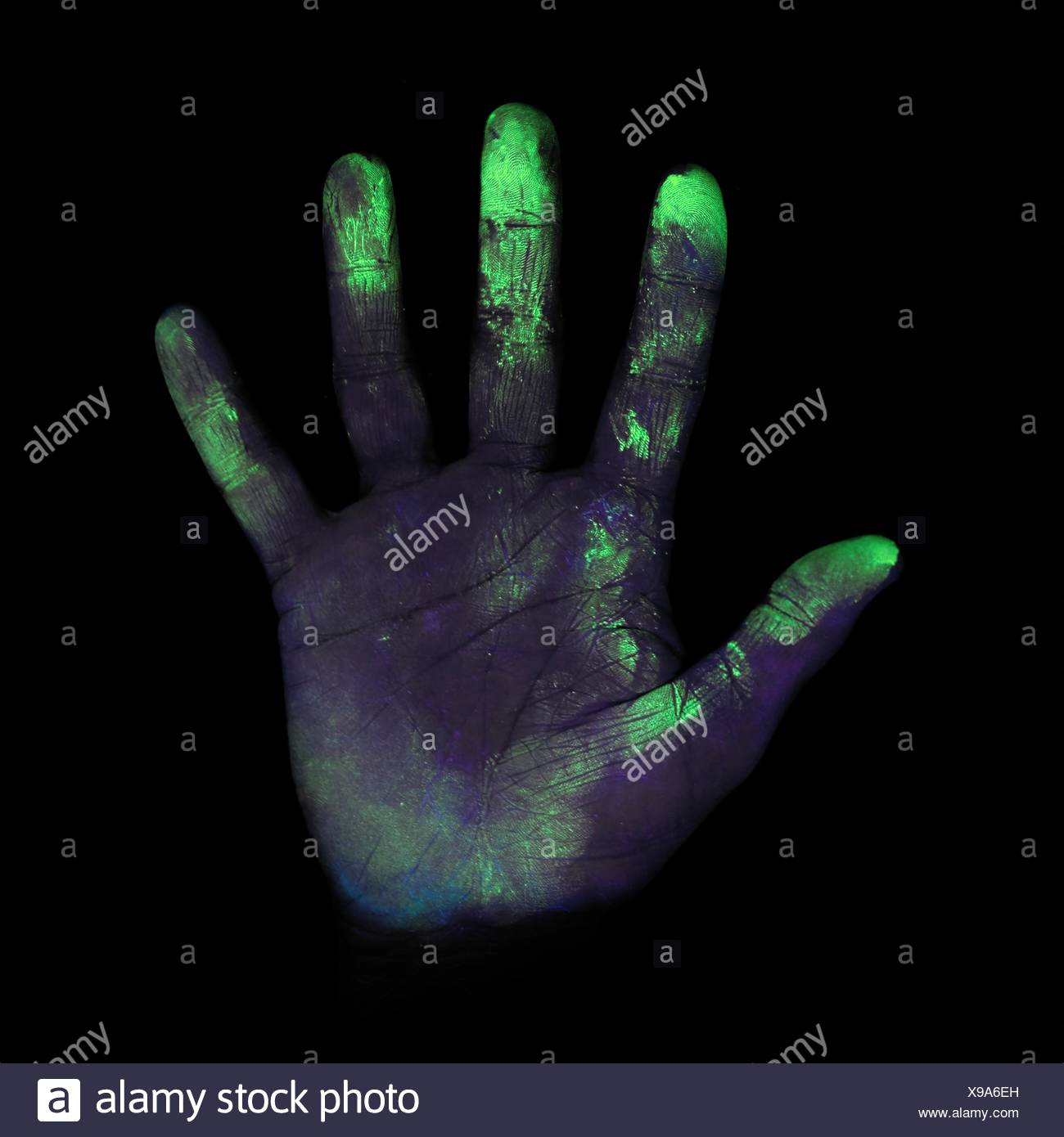 ultraviolet light showing bacteria on a person 39 s hand stock photo 281122425 alamy