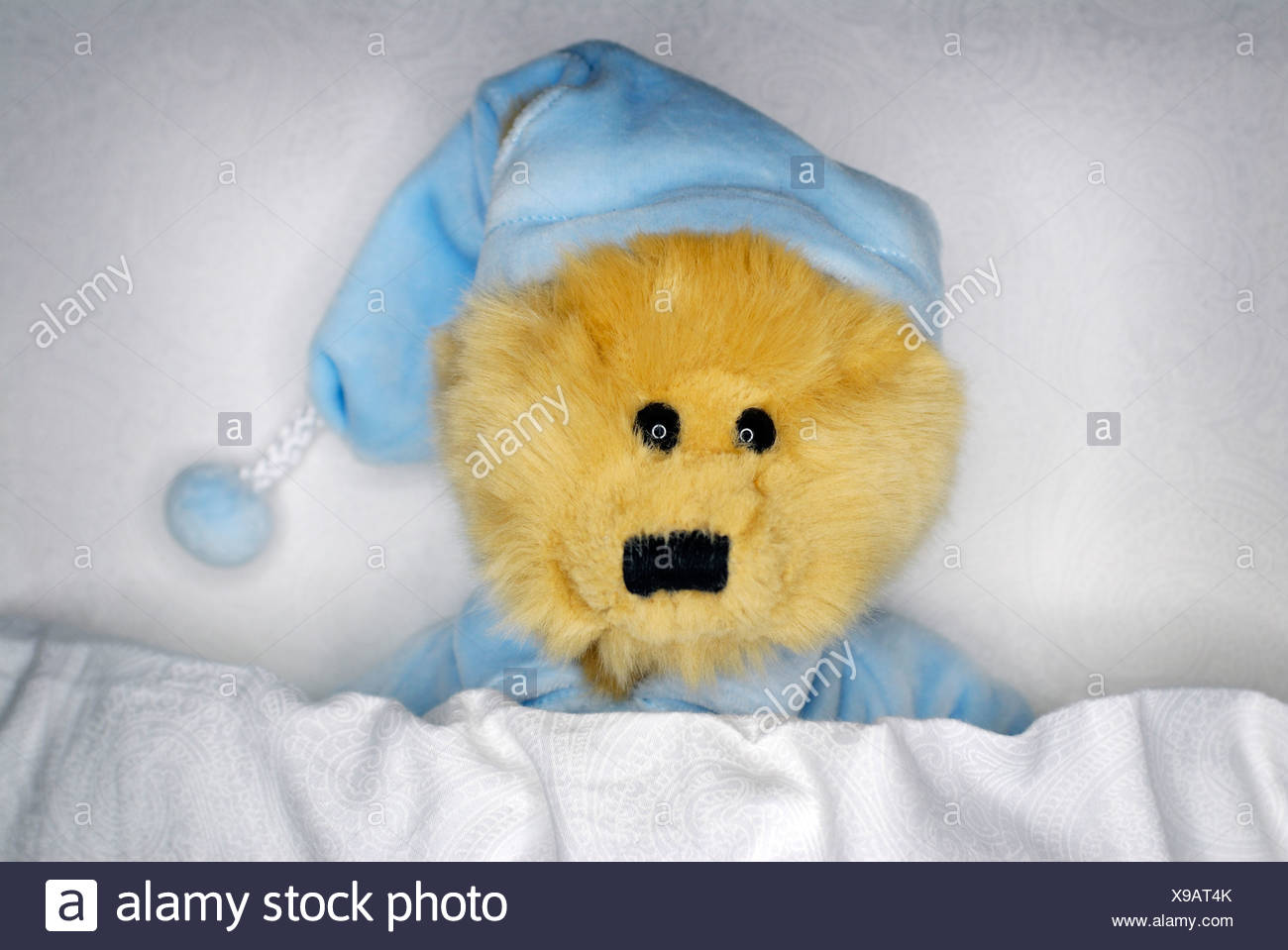 teddy bear in a bed - Stock Image