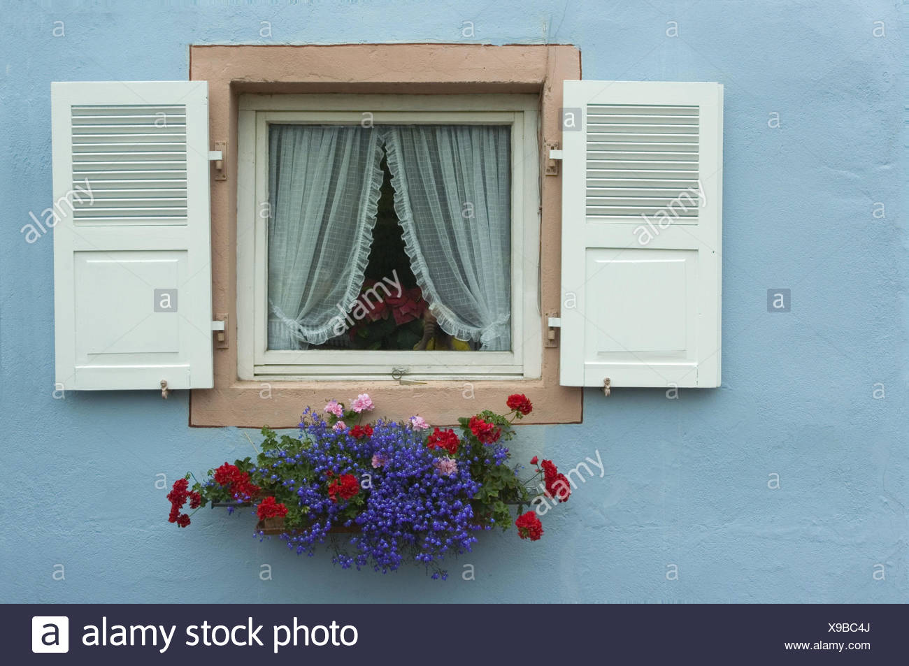 House, window, floral decoration, detail, residential house, facade, light blue, shutters, white, openly, curtains, window box, flowers, geraniums, Pelargonien, - Stock Image