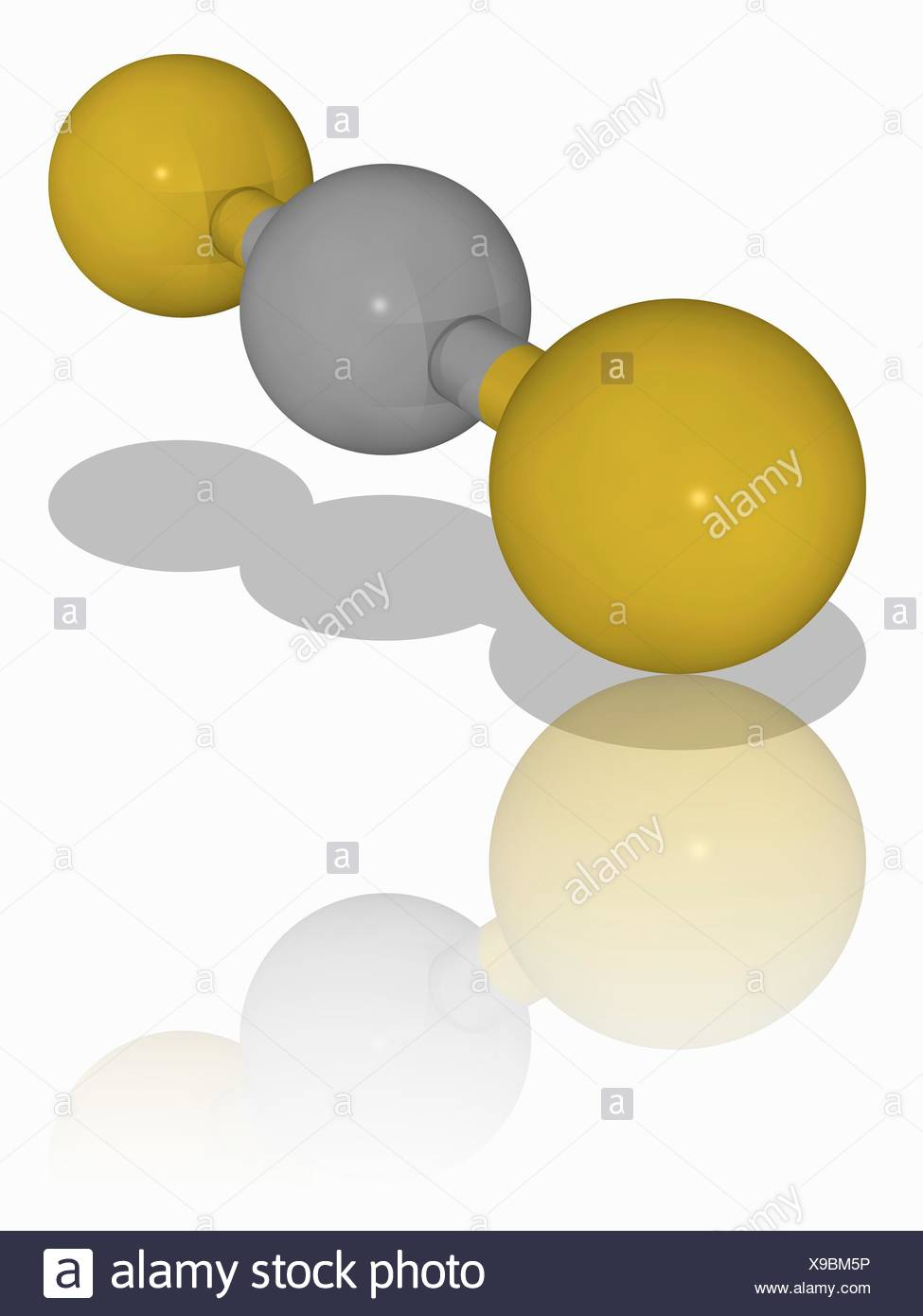 Carbon Disulphide Molecular Model Of The Inorganic Carbon Compound Carbon Disulphide Cs2 This Colourless Liquid Is Used In Organic Chemistry Synthesis And As A Non Polar Solvent In The Chemical Industry Atoms Are