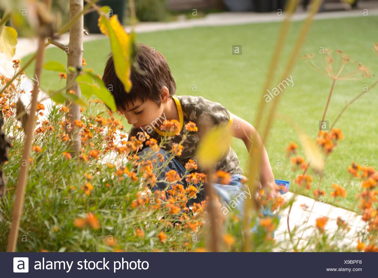 View through plants of boy crouched in garden holding spade looking down - Stock Image