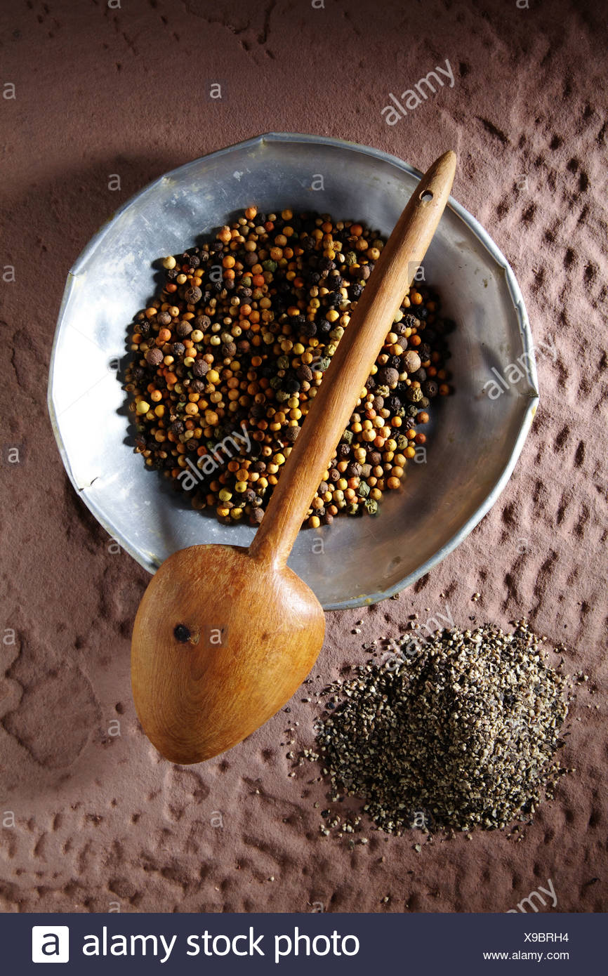 Colourful peppercorns (Piper nigrum) on a metal plate with a wooden spoon and coarsely ground pepper on a rustic stone base - Stock Image